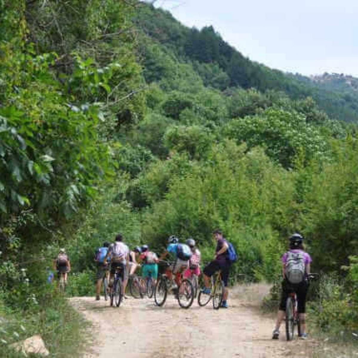 Biking National Park Rodopi