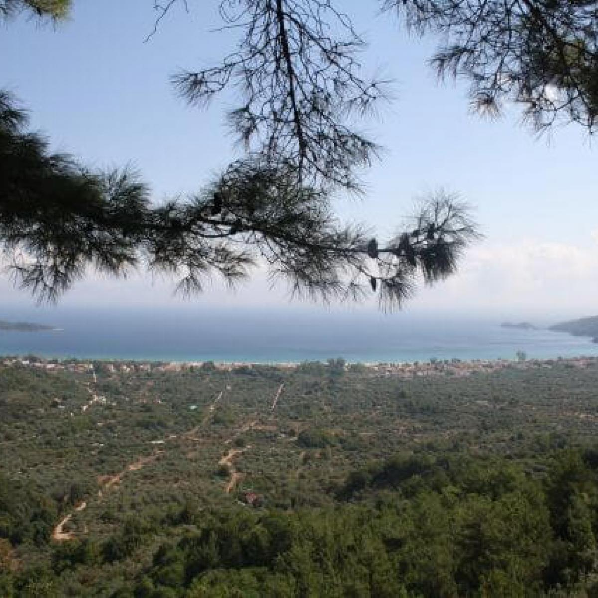 Thasos, Inspired by Nature
